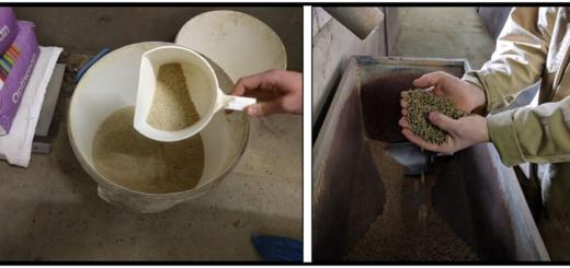 Voorbeelden droogvoer - HAS Blog - HAS Hogeschool