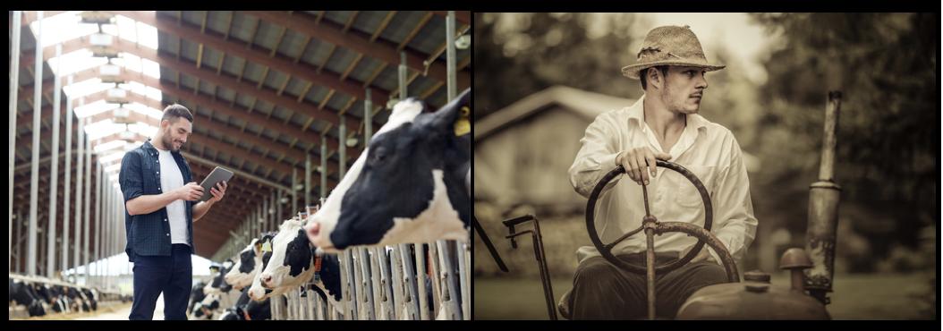 Ambachtelijke en technologische boeren - Blog HAS Hogeschool