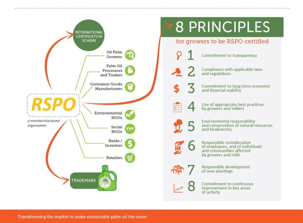 De 8 criteria van RSPO Round table Sustainable Palm Oil MVO - HASblog - HAS Hogeschool